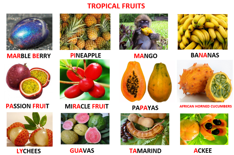 Image result for Tropical fruits